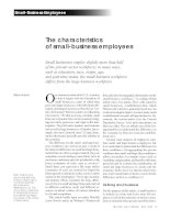Tài liệu The characteristics of small-business employees ppt