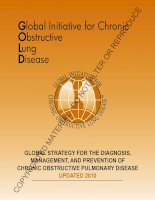 Tài liệu GLOBAL STRATEGY FOR THE DIAGNOSIS, MANAGEMENT, AND PREVENTION OF CHRONIC OBSTRUCTIVE PULMONARY DISEASE pptx
