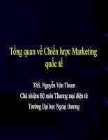 Tài liệu Tổng quan về Chiến lược Marketing quốc tế doc