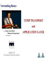 Tài liệu Networking Basics - TCP/IP TRANSPORT and APPLICATION LAYER doc