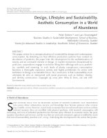 Tài liệu Design, Lifestyles and Sustainability. Aesthetic Consumption in a World of Abundance pptx