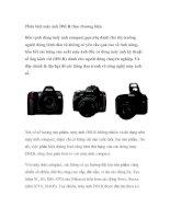 Tài liệu Phân biệt máy ảnh DSLR theo thương hiệu pdf