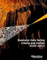 Tài liệu Business risks facing mining and metals 2012–2013 pptx