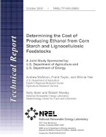 Tài liệu Determining the Cost of Producing Ethanol from Corn Starch and Lignocellulosic Feedstocks pot