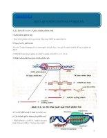 Chủ đề 3. Quá trình phiên mã và dịch mã
