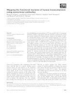 Tài liệu Báo cáo khoa học: Mapping the functional domains of human transcobalamin using monoclonal antibodies pptx