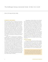 Tài liệu The challenges facing community banks: In their own words docx