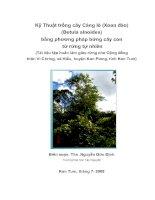 Tài liệu Kỹ Thuật trồng cây Cáng lò (Xoan đào) (Betula alnoides) bằng phương pháp bứng cây docx