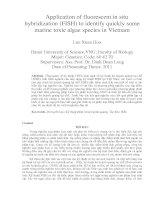 Ứng dụng kỹ thuật phân tử lai huỳnh quang (FISH) nhằm xác định nhanh một số loài tảo độc hại biển việt nam