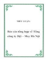 Tài liệu TIỂU LUẬN: Báo cáo tổng hợp về Tổng công ty Dệt – May Hà Nội pptx
