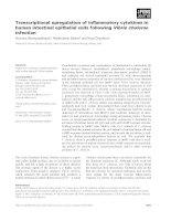 Tài liệu Báo cáo khoa học: Transcriptional upregulation of inflammatory cytokines in human intestinal epithelial cells following Vibrio cholerae infection pptx