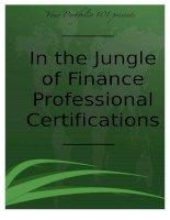 Tài liệu In the Jungle of Finance Professional Certifications docx