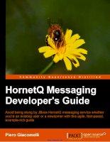 Tài liệu HornetQ Messaging Developer''''s Guide pdf