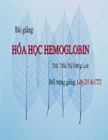Tài liệu Hóa học HEMOGLOBIN pptx