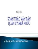 Tài liệu SOẠN THẢO VĂN BẢN QUẢN LÝ NHÀ NƯỚC pdf