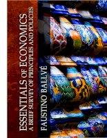 Tài liệu Essentials of Economics a brief survey of principles and policies pdf