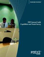 Tài liệu 2009 Internal Audit Capabilities and Needs Survey pot