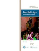Tài liệu MATERNAL HEALTH IN NIGERIA WITH LEADERSHIP, PROGRESS IS POSSIBLE potx