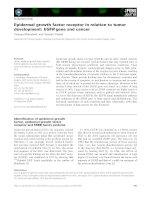 Tài liệu Báo cáo khoa học: Epidermal growth factor receptor in relation to tumor development: EGFR gene and cancer ppt