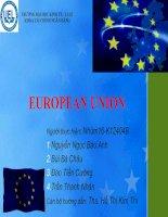 Tài liệu EUROPEAN UNION -Liên minh châu Âu ppt