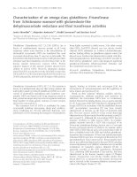 Tài liệu Báo cáo Y học: Characterization of an omega-class glutathione S-transferase from Schistosoma mansoni with glutaredoxin-like dehydroascorbate reductase and thiol transferase activities pptx