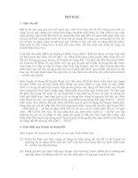 Tài liệu Báo cáo quy hoạch - kế hoạch sử dụng đất kỳ đầu và kỳ cuối huyện Xuân Lộc pot