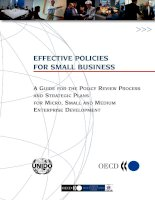 Tài liệu EFFECTIVE POLICIES FOR SMALL BUSINESS: A GUIDE FOR THE POLICY REVIEW PROCESS AND STRATEGIC PLANS FOR MICRO, SMALL AND MEDIUM ENTERPRISE DEVELOPMENT pptx
