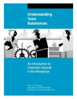 Tài liệu Understanding Toxic Substances - An Introduction to Chemical Hazards in the Workplace docx