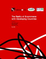 Tài liệu The Reality of E-commerce with Developing CountriesPrepared ppt