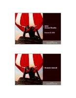 Tài liệu Annual Results 2012 : Bernard Arnault doc