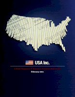 Tài liệu USA INC. A BASIC SUMMARY OF AMERICA''''S FINANCIAL STATEMENTS pdf
