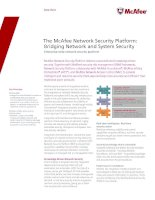Tài liệu The McAfee Network Security Platform: Bridging Network and System Security doc