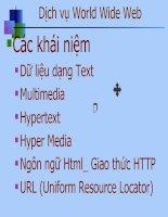 Tài liệu Dịch vụ World Wide Web ppt