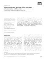 Tài liệu Báo cáo khoa học: Osmosensing and signaling in the regulation of mammalian cell function docx