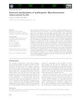 Tài liệu Báo cáo khoa học: Survival mechanisms of pathogenic Mycobacterium tuberculosis H37Rv ppt