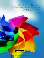 Tài liệu State of Tennessee Comprehensive Cancer Control Plan 2009-2012 ppt