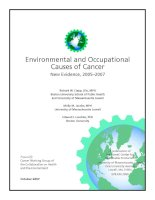 Tài liệu Environmental and Occupational Causes of Cancer doc