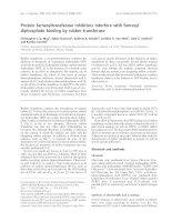 Tài liệu Báo cáo khoa học: Protein farnesyltransferase inhibitors interfere with farnesyl diphosphate binding by rubber transferase pdf