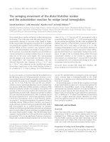 Tài liệu Báo cáo khoa học: The swinging movement of the distal histidine residue and the autoxidation reaction for midge larval hemoglobins docx