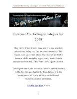Tài liệu Internet Marketing Strategies for 2008 doc