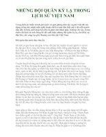 Tài liệu NHỮNG ĐỘI QUÂN KỲ LẠ TRONG LỊCH SỬ VIỆT NAM docx