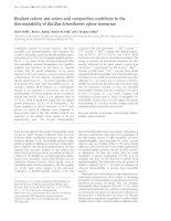 Tài liệu Báo cáo Y học: Bivalent cations and amino-acid composition contribute to the thermostability of Bacillus licheniformis xylose isomerase doc