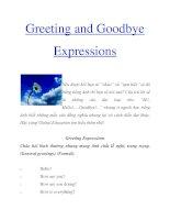 Tài liệu Greeting and Goodbye Expressions doc
