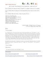 Tài liệu ĐỀ THI THỬ ĐẠI HỌC LẦN I NĂM 2013 Môn: NGỮ VĂN; KHỐI: C, D ĐỀ 20 pdf