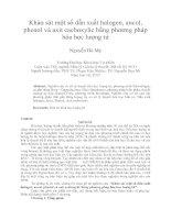 Khảo sát một số dẫn xuất halogen, ancol, phenol và axit cacboxylic bằng phương pháp hóa học lượng tử