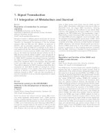 Tài liệu Báo cáo khoa học: 1. Signal Transduction 1.1 Integration of Metabolism and Survival pdf