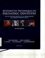 Tài liệu Restorative Techniques in Paediatric Dentistry: An Illustrated Guide to the Restoration of Carious Primary Teeth pptx