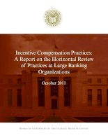 Tài liệu Incentive Compensation Practices: A Report on the Horizontal Review of Practices at Large Banking Organizations pdf