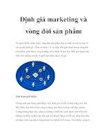 Tài liệu Định giá marketing và vòng đời sản phẩm docx