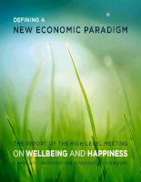 Tài liệu The RepoRT of The high-LeveL MeeTing on WellBeing and Happiness docx